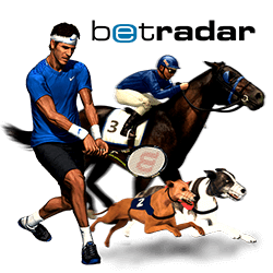 betradar Virtual Sports